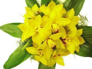 Bouquet rond orchidées cymbidium